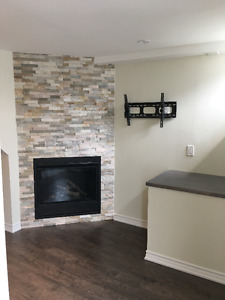 Basement for Rent in Richmond Hill Seperate Entrance