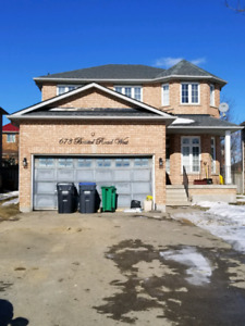 TOP FLOOR RENTAL - CENTRAL MISSISSAUGA Available April 1st 2019