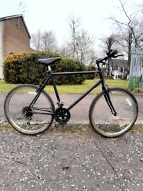 Mountain bike (large frame)