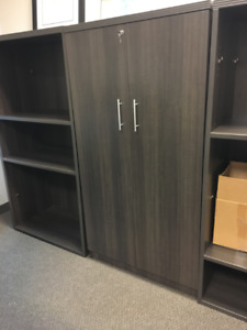 MOVING SALE: Large Unit with shelves and doors for Office