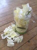Wedding decorations white and pale yellow
