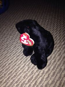 Cinders Ty beanie baby with tags price firm London Ontario image 2