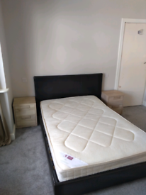 Lovely, spacious room to rent, In plympton