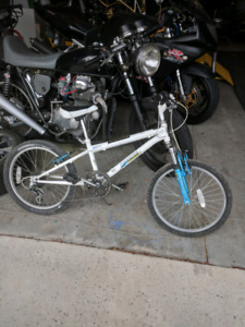 Kids 6 speed bike 20in.