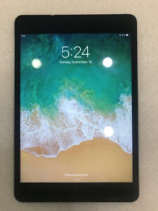 Apple iPad Mini in Mint Condition - Space Grey + Case