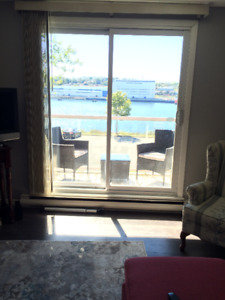 All Inclusive, Ocean Front, Cat Friendly 1BR@275 Windmill Rd