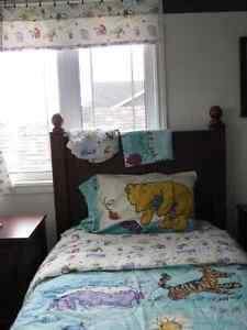 Winne the Pooh and friends,  4 seasons bedding... St. John's Newfoundland image 1