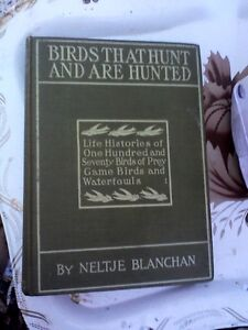 Birds That Hunt and Are Hunted/HEARTBEATThrift Store/BayView