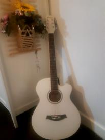 guitar tiger brend new