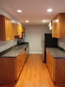 One bedroom basement suite for rent in Langley Willoughby