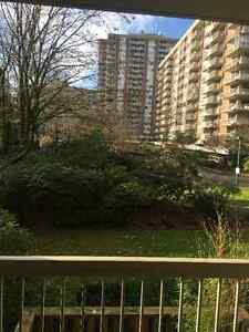 Renovated 2 bedroom apartment Downtown-West End Greater Vancouver Area image 7