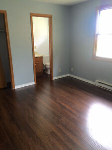 Completely Renovated Large 2 Bedroom Modular Home London Ontario image 6