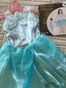 Fairy Costume with Wings - Size L/G