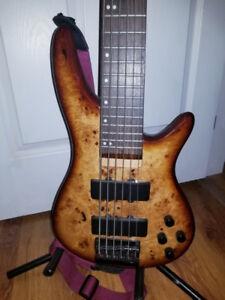 Canadian made Carparelli 6 string burl bass fender ibanez newish