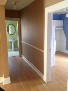 Professional home/business renovations by Neil Windsor Region Ontario image 3