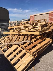 Fire Wood / Pallets