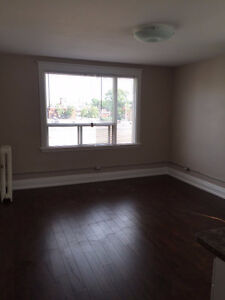 NEWLY RENOVATED LARGE BRIGHT 1 BEDROOM - 625 SQ FT