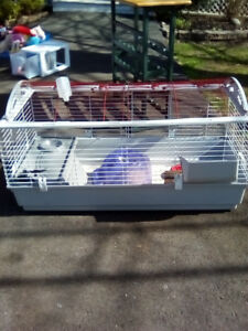 Small animal cage, with accessories