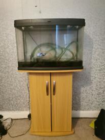 Love fish 64l fish tank