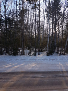 Wooded lots for sale