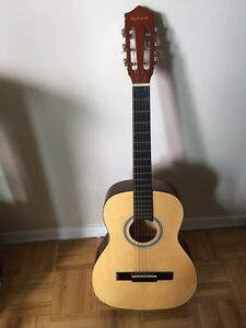 """Hyburn"" acoustic guitar with soft case"