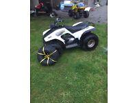 125cc Yamaha breeze quad