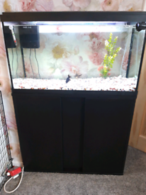 Fish tank and cabinet.