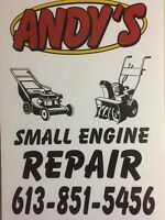 Small engine repair to lawn tractor push lawn mower and snowblow