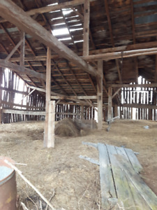 Beautiful Barn Beams and Boards Standing