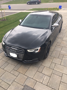 2013 Audi S5 Sport Pkg Coupe (2 door)
