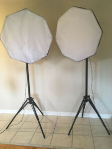 2 x 7-Bulb Continuous Photography Studio Lights