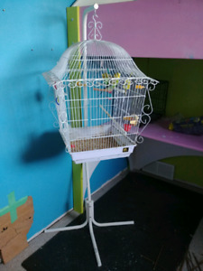 2 Birds, Cage, and Stand