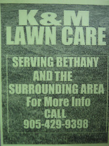 LAWN CUTTING AND GENERAL YARD CLEAN UP Kawartha Lakes Peterborough Area image 1