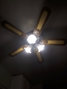 Beautiful indoor ceilig fan & 3 lights