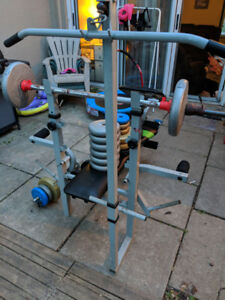 Weight bench with over 500lbs of free weight!
