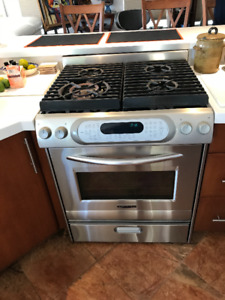 Kitchen Aid Pro , Convection oven