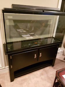Large sized black fish aquarium - good condition