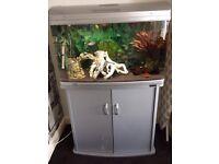 Aqua One aquarium tank (AR-850) 165 litre including FULL SET UP! ****BARGAIN****