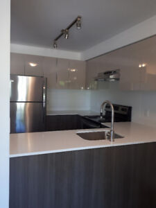 BRAND NEW beautiful townhouse for rent