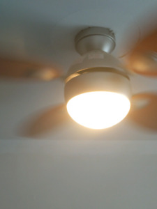 Ceiling Fan/Light with Remote