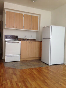 Studio Bachelor Apartment Available June and July