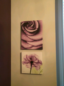 Room decoration (paintings + curtains)