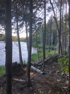 Terrain au bord de l'eau (Lac Lili à 85km de Montréal) Chertsey