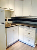 Bright,clean newly renovated 2 bedroom apartment on lower level