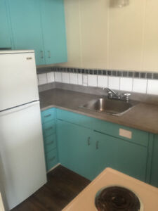 1 Bedroom Apartment newly renovated in downtown Smithers
