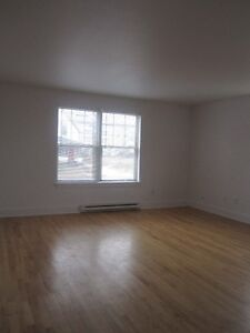 Located in the downtown area ( 2 bedroom )