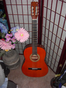 Acoustic Guitar - Awesome Christmas Gift!