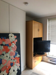 Custom Built Storage Cabinet and TV Stand for Sale