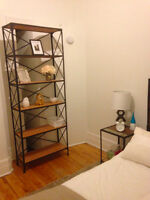 Furnished 3 1/2 Apartment Immediate Lease Transfer MCGILL GHETTO