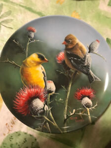 """Kevin Daniel Collectible Plate """"The Goldfinch"""" Bradford Exchange"""